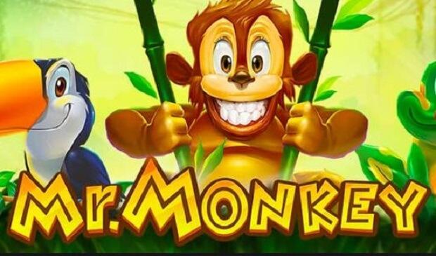 Mr Monkey Slot